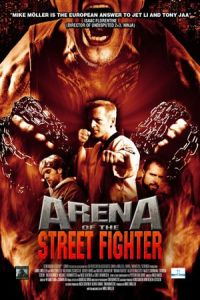 Urban Fighter (Arena of the Street Fighter) (2013)